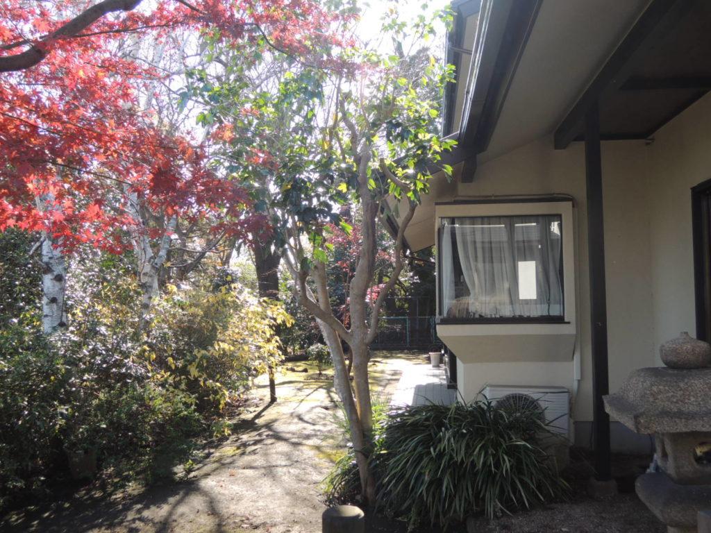 画像:庭からの外観