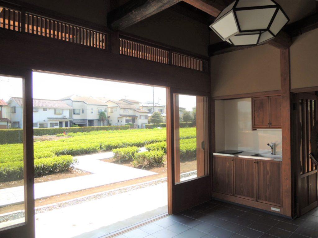 画像:管理棟から茶畑を見て